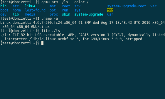 Screenshot: QEMU running a 32-bit ARM binary on a 64-bit Linux system.